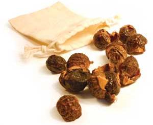 soapnuts11
